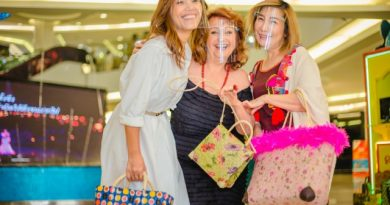 Three Lovely well known ladies promote HHNFT children's DECOUPAGE products